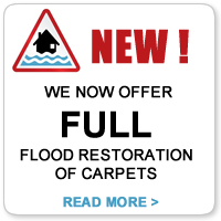 carpet flood restoration